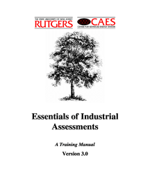 Essentials of Industrial Assessments